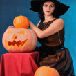Witch — Stock Photo #4089767