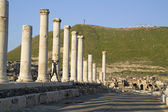 Ancient pillars of ruined roman town Beit Shean (Scythopolis), I — Stock Photo