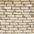 Texture, brick wall — Stock Photo
