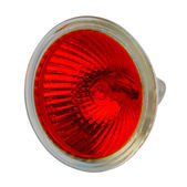 Red halogen electric lamp, isolated — Stock Photo