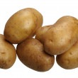 Potatoes, isolated — Stock Photo