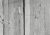 Weathered white wood — Stock Photo
