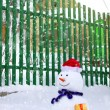 Snowman near house - Stock Photo