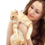 Girl and British cat isolated — Stock Photo