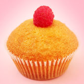 Muffin on a pink background — Stock Photo