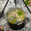 Cooking fish soup on the fire — Stock Photo #3967695