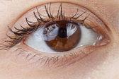 A beautiful macro human eye — Stock Photo