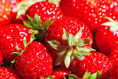 Red juicy strawberries — Stock Photo