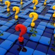 Labyrinth of questions — Stock Photo