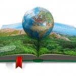 Environment protection concept — Stock Photo