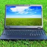 Laptop on grass — Stock Photo #4255239