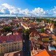 Panorama of Tallinn, Estonia — Stock Photo