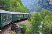 By the train across Scandinavian mountains — Stock Photo