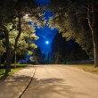 Night alley — Stock Photo
