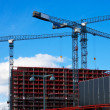 Stock Photo: Tower cranes