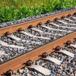 Railroad track fragment - Stock Photo