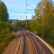Stock Photo: Suburbrailroad track