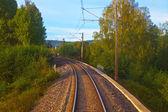 Suburban railroad track — Stock Photo