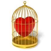 Coração em gaiola — Fotografia Stock