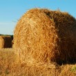 Hay bales — Stock Photo #4755102