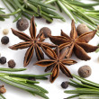 Rosemary, peppercorn, cloves and anise — Stock Photo