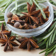 Bunch of rosemary and anise stars - Stock Photo