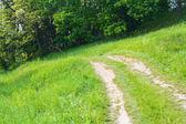 Toprak yol — Stok fotoğraf