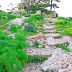 Kantara castle path — Stock Photo #4852470