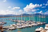 White yachts in the port — Stock Photo