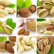 Collage from tasty nuts — Stock Photo
