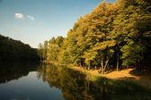 Göl, sonbahar yatay — Stok fotoğraf