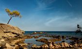 Ruins of antic port Phaselis, Turkey — Stock Photo