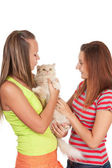 Teen girls playing with cat — Stock Photo