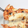 Pizza Slice — Stock Photo #5314686