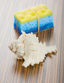 Soap bath sponge and cockle shell — Stock Photo