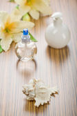 Cockle shell flower and bottles — Stock Photo