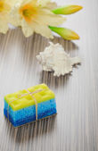 Soap bath sponge cockle shell and flower — Stock Photo