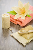 Flower towel bast sponge and hairbrush — Stock Photo