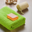 Stok fotoğraf: Bathing accessories