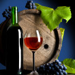 Composition from grapes and red wine — Stock Photo