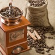 Coffee beans cinnamon and coffee grinder — Stock Photo #5077883