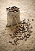 Coffee beans in bag on sacking — Stock Photo