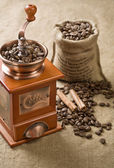 Coffee beans cinnamon and coffee grinder — Stock Photo