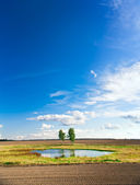 Lake on a autumn field — Stockfoto