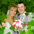 The groom and the bride in foliage — Stock Photo #5084076