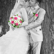 Foto Stock: Wedding couple on the background of a tree trunk
