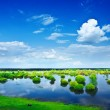 View on a flood field — Stock Photo