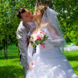 The wedding pair kisses near a tree trunk — 图库照片
