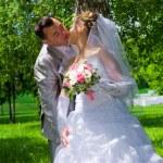 The wedding pair kisses near a tree trunk — Stock Photo