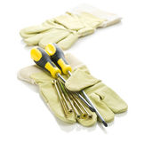 Screws and screwdrivers with gloves — Foto Stock